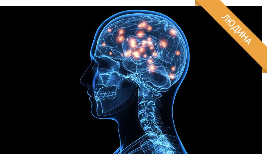 Цікаві факти про мозок   Факт дня українською 079ed0fd651